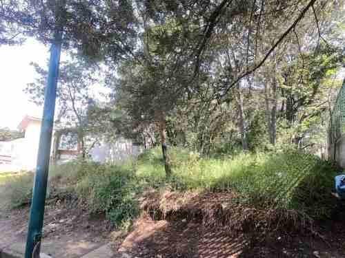 terreno  venta en condado de sayavedra