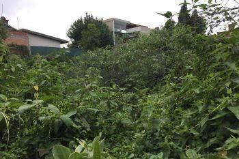 terreno venta en  crater, jardines del pedregal