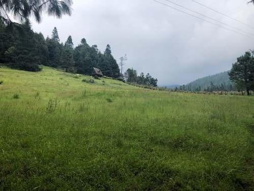 terreno venta la ladera:  coyoltepec, municipio de ocuilan.
