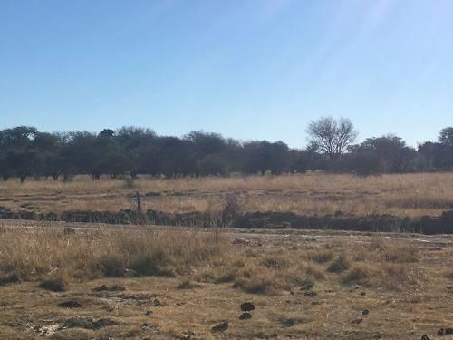 terreno venta predio cañas