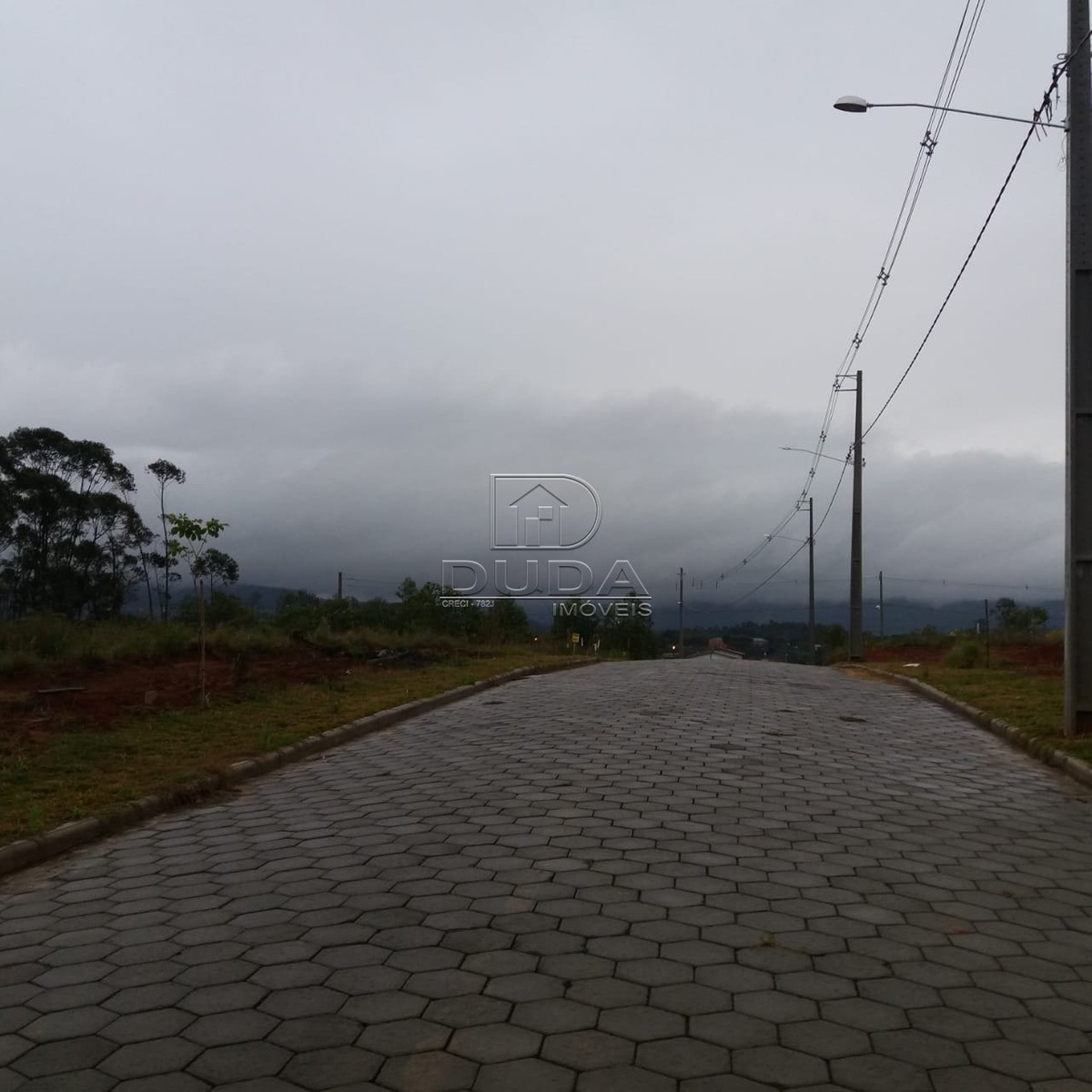 terreno - vila floresta - ref: 29366 - v-29364