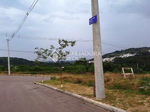 terreno - vila nova - ref: 248661 - v-248661