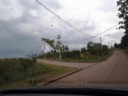 terreno - vila nova - ref: 248667 - v-248667