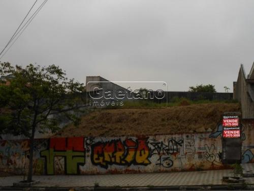 terreno - vila rosalia - ref: 13219 - v-13219