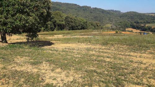 terrenos 100% plaino a 300 mtrs da rodovia posse imediata je