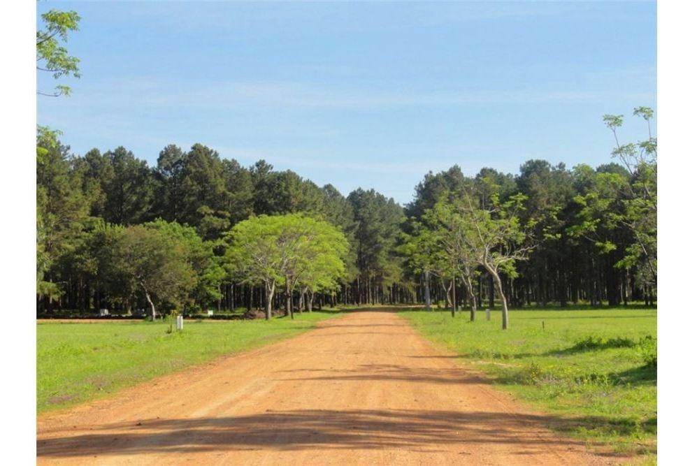 terrenos 1.000 y 2.000 m² - listos para construir