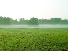 terrenos 1000m² no campo, últimos lotes ! 038