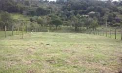 terrenos 1000m²,confira 038