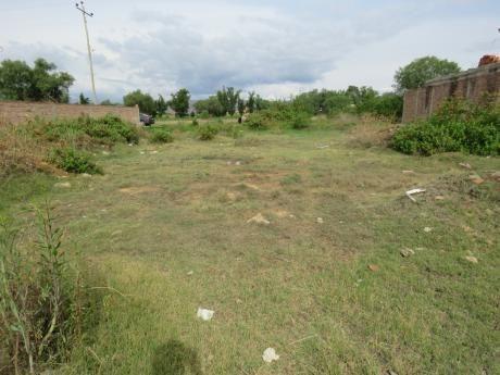 terrenos arrozeros en sector rural