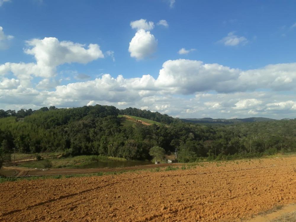 terrenos c/ otima topografia, proximo a escola e farmacia jb