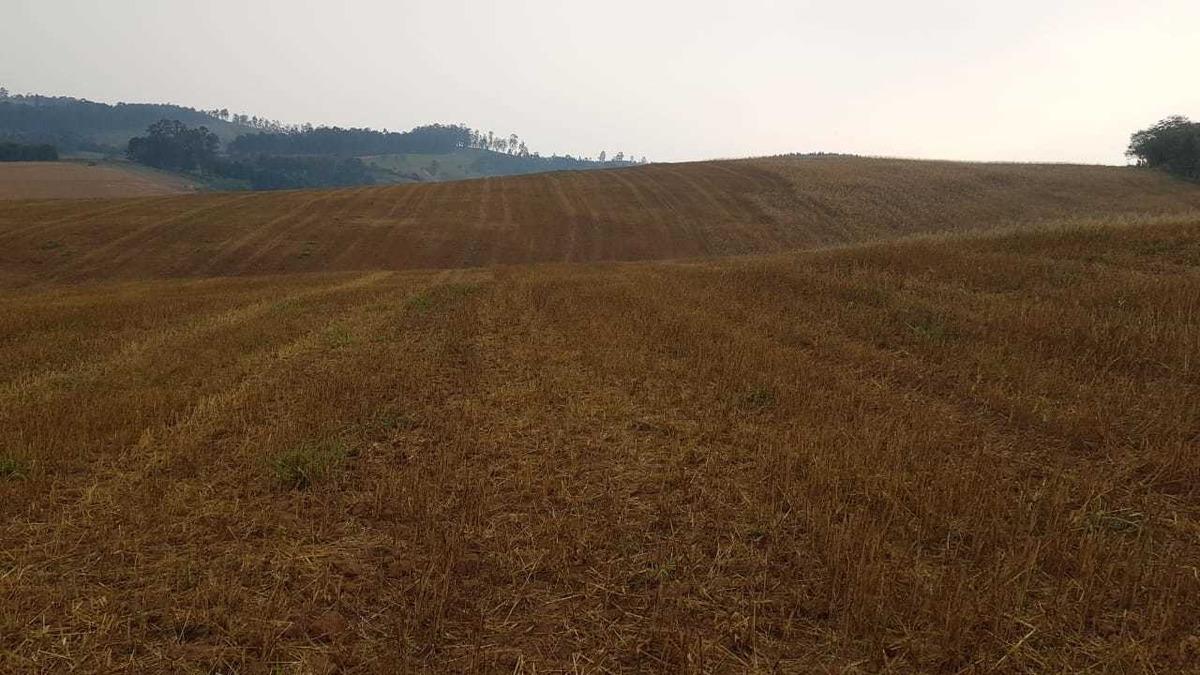 terrenos com 1000mt