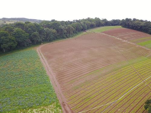 terrenos com area verde, 1000 m2 demarcados e 100% plano j