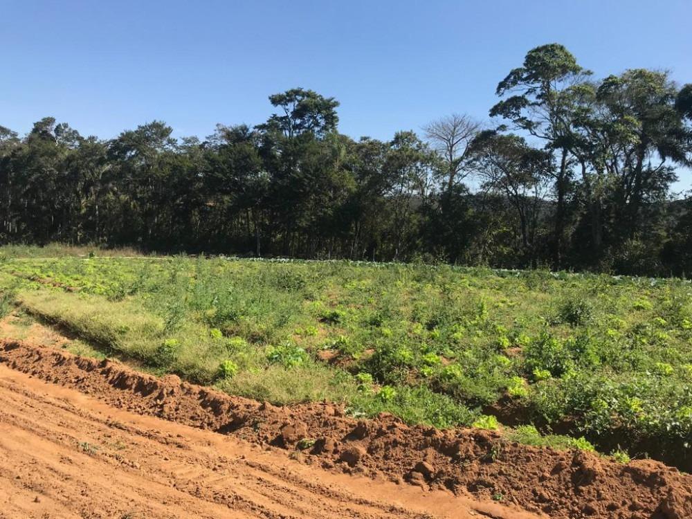 terrenos com excelente topografia prontos para construir jb