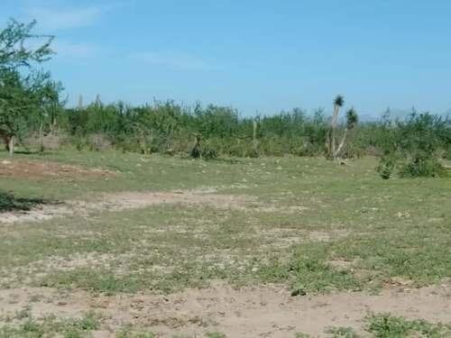 terrenos de 10 000m2 muy baratos a solo $110 mil pesos
