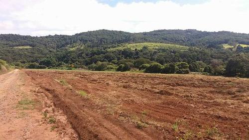 terrenos de 1000 m² plainos, já cascalhados e ruas abertas