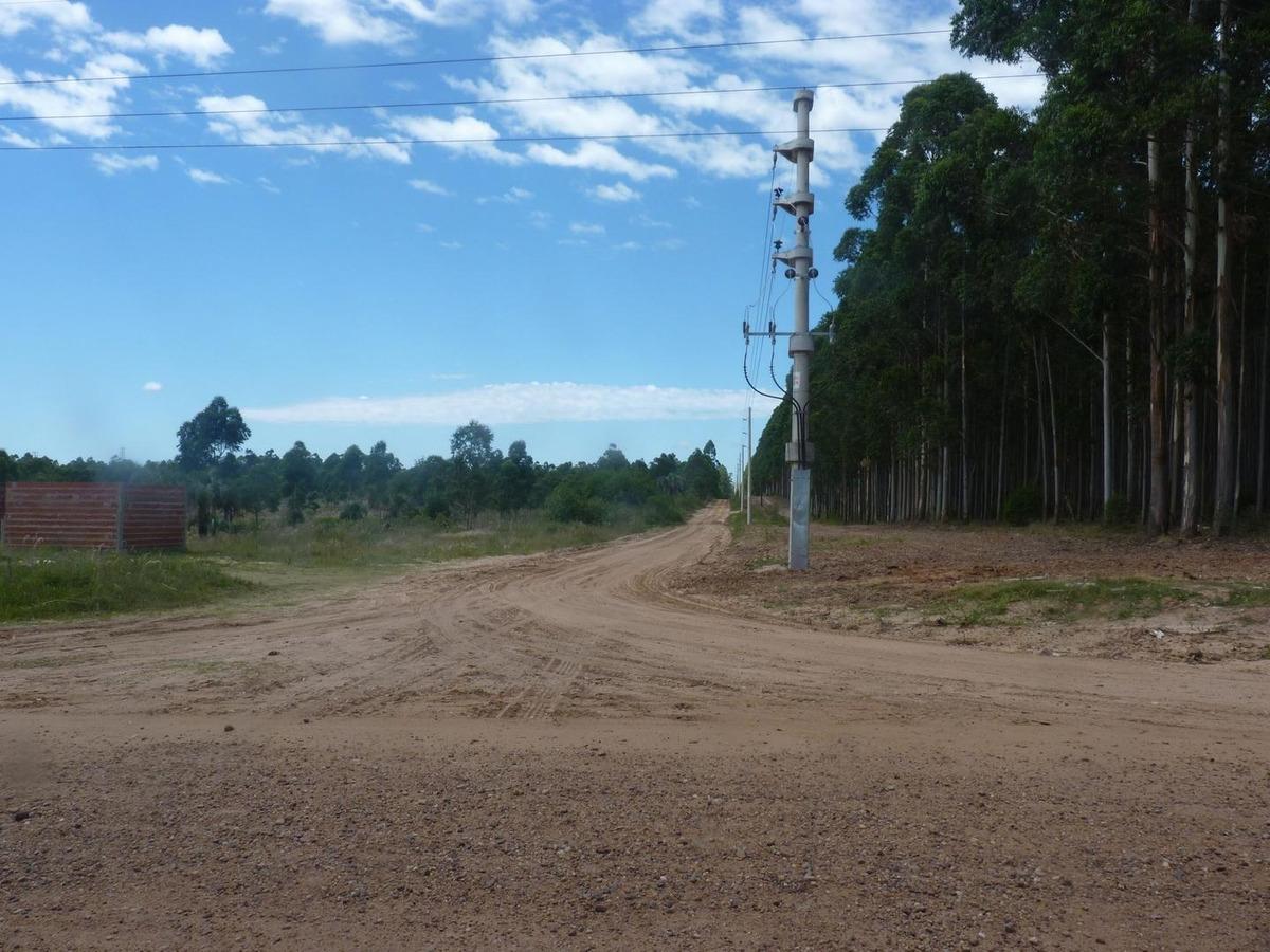 terrenos de 5000 m2 en villa zorraquin