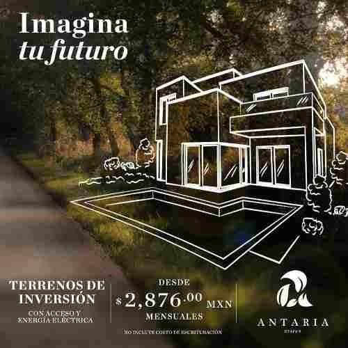 terrenos de inversión en yucatan, proyecto antaria 2