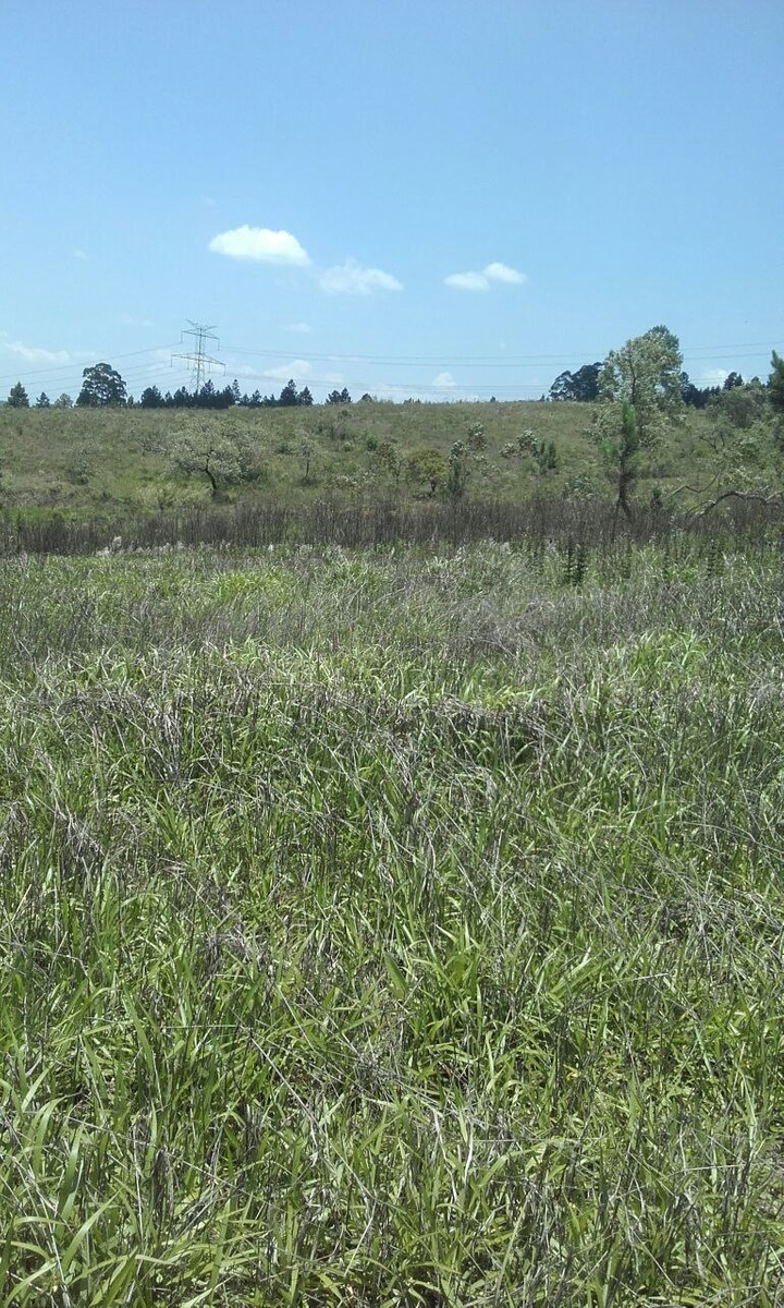 terrenos demarcados livres para a construção jd