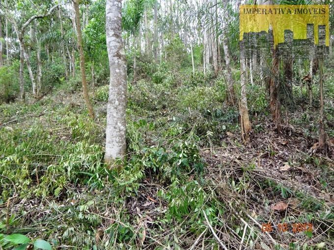 terrenos em condomínio à venda  em cajamar/sp - compre o seu terrenos em condomínio aqui! - 1229630