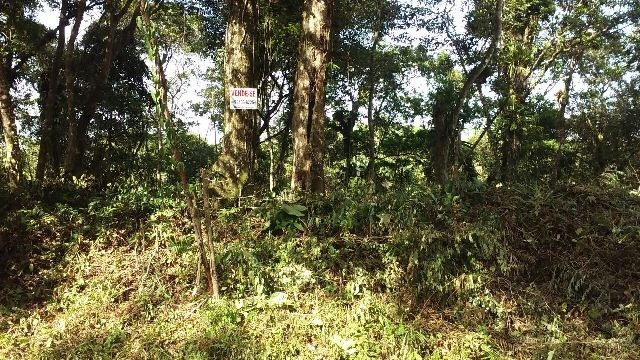 terrenos em itanhaém-sp