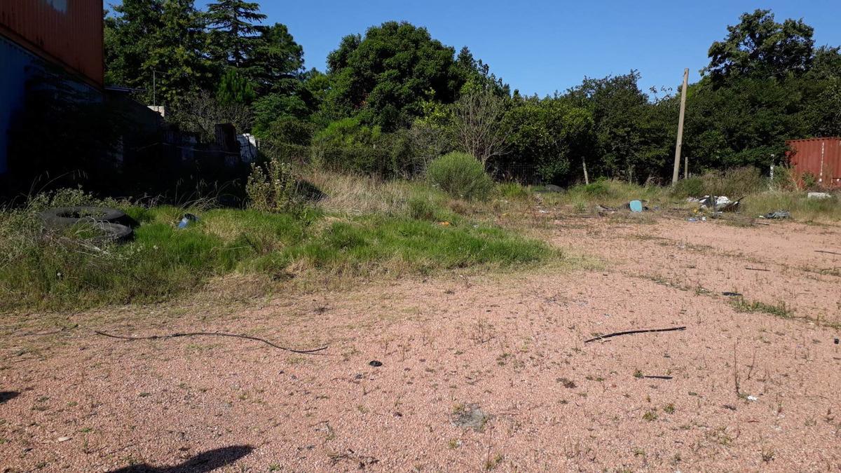 terrenos en calle araucaria y tomkinson