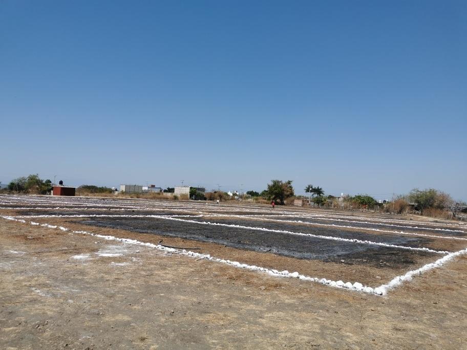 terrenos en el centro de tequesquitengo