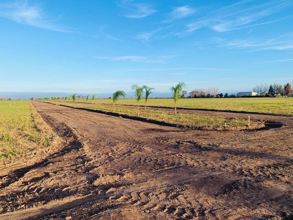 terrenos en estancia las moras - lotes desde 300 m2 - financiacion hasta en 48 cuotas
