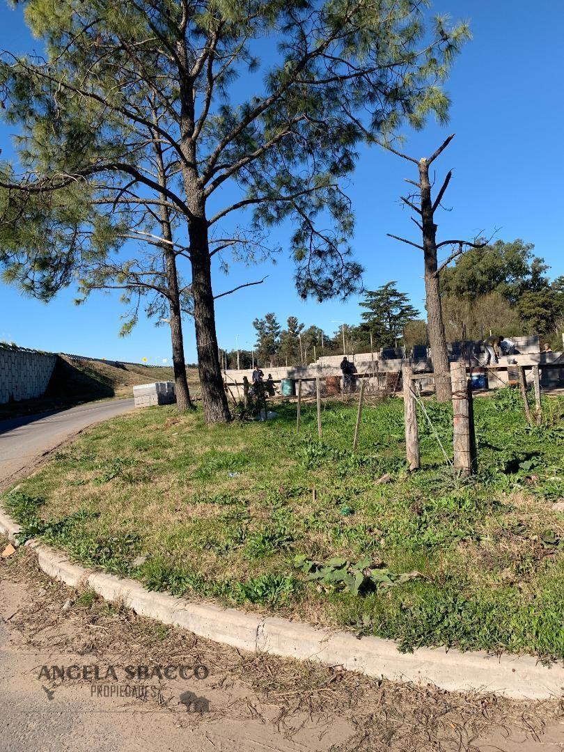 terrenos en parada robles, ruta 8 km 77