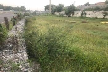 terrenos en renta en nuevo san rafael, guadalupe
