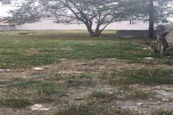 terrenos en renta en privada nogalar, san nicolás de los garza