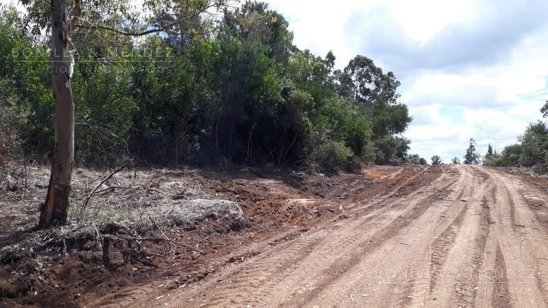 terrenos en sierra del tirol - piriápolis, la opción más accesible de la zona.