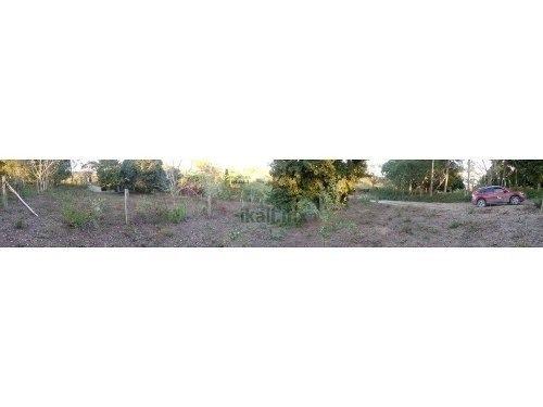 terrenos en venta 200 m² en cruz naranjos tuxpan veracruz , se encuentra ubicado en la calle 10 de mayo en la comunidad de cruz naranjos, son 5 terrenos de 200 m² cada uno, los precios varian dependi