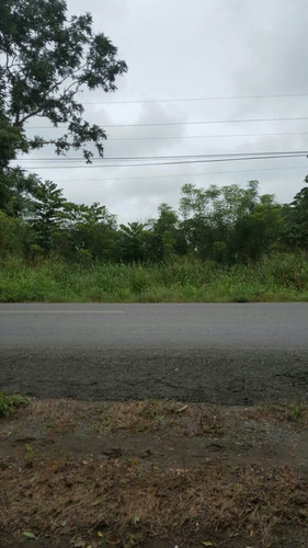 terrenos en venta en alanje