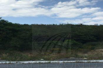 terrenos en venta en bosques de valle alto, monterrey