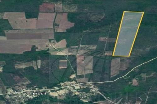terrenos en venta en brasil, linares