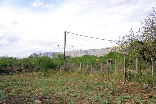terrenos en venta en carpinteria zona mas alta del pueblo