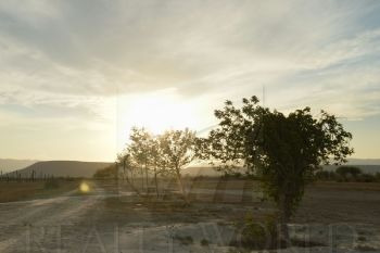 terrenos en venta en centro villa de garcia (casco), garca
