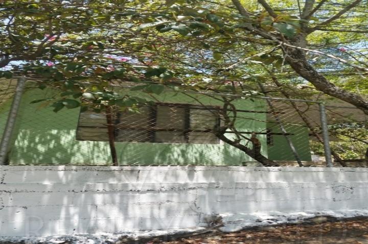 terrenos en venta en el fraile, montemorelos