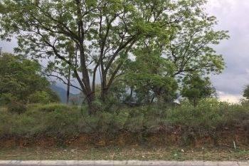 terrenos en venta en fracc. residencial los olivos, santiago