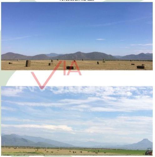 terrenos en venta en km 8 ejido pasedon, ramos arizpe, coahuila de zaragoza