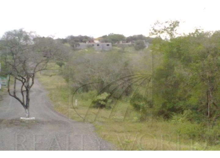 terrenos en venta en montemorelos centro, montemorelos