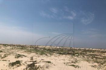 terrenos en venta en playa sol, matamoros