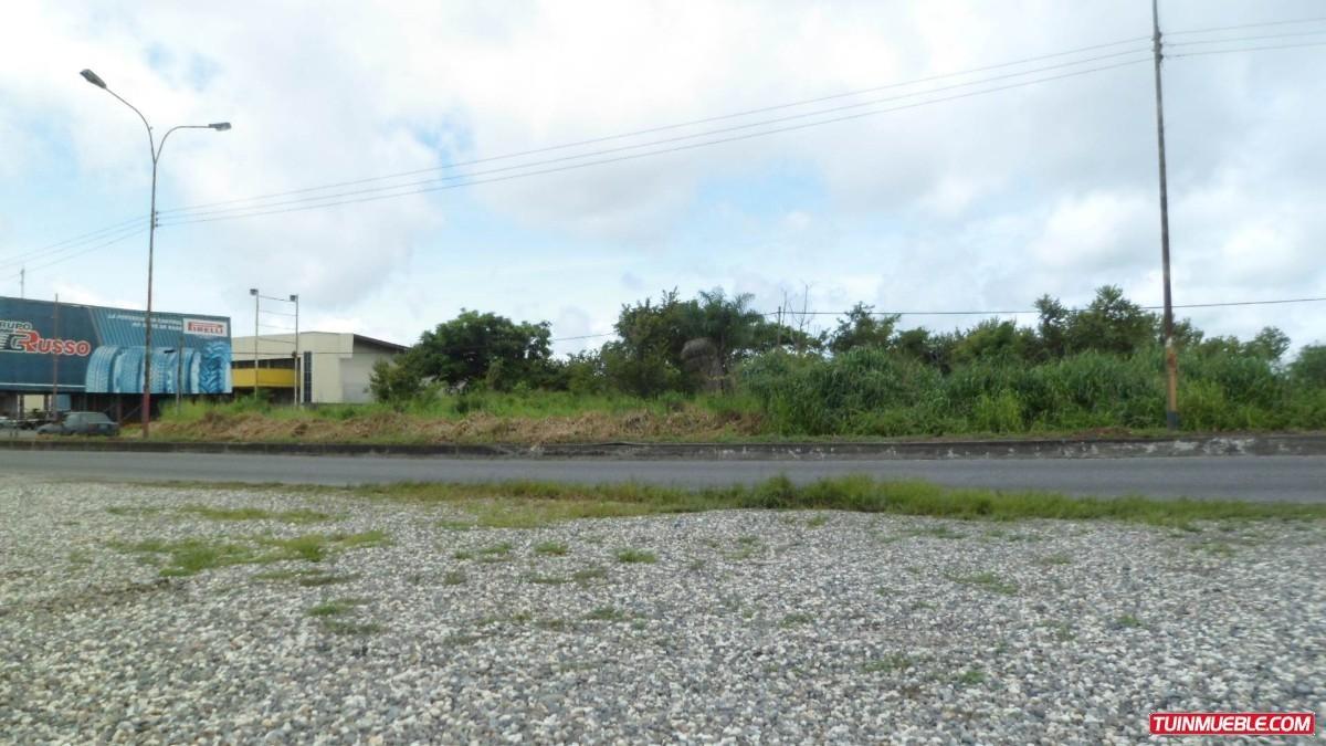 terrenos en venta en portuguesa 20000 m2 oferta del mes