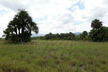 terrenos en venta en san juan de los garza, cadereyta jimnez