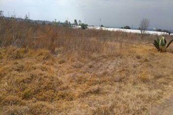 terrenos en venta en san miguel tlaixpan, texcoco