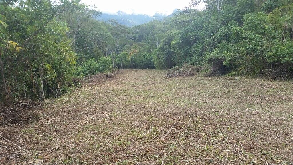 terrenos en venta en san ramón