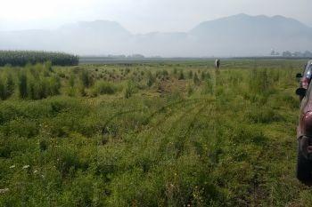 terrenos en venta en tenango de arista, tenango del valle