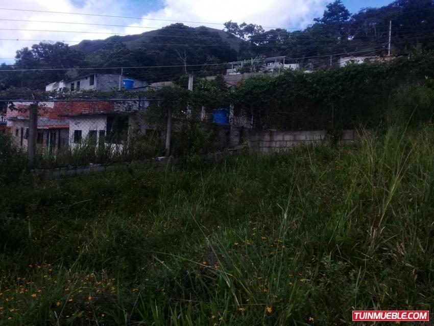 terrenos en venta la laguna de palmira