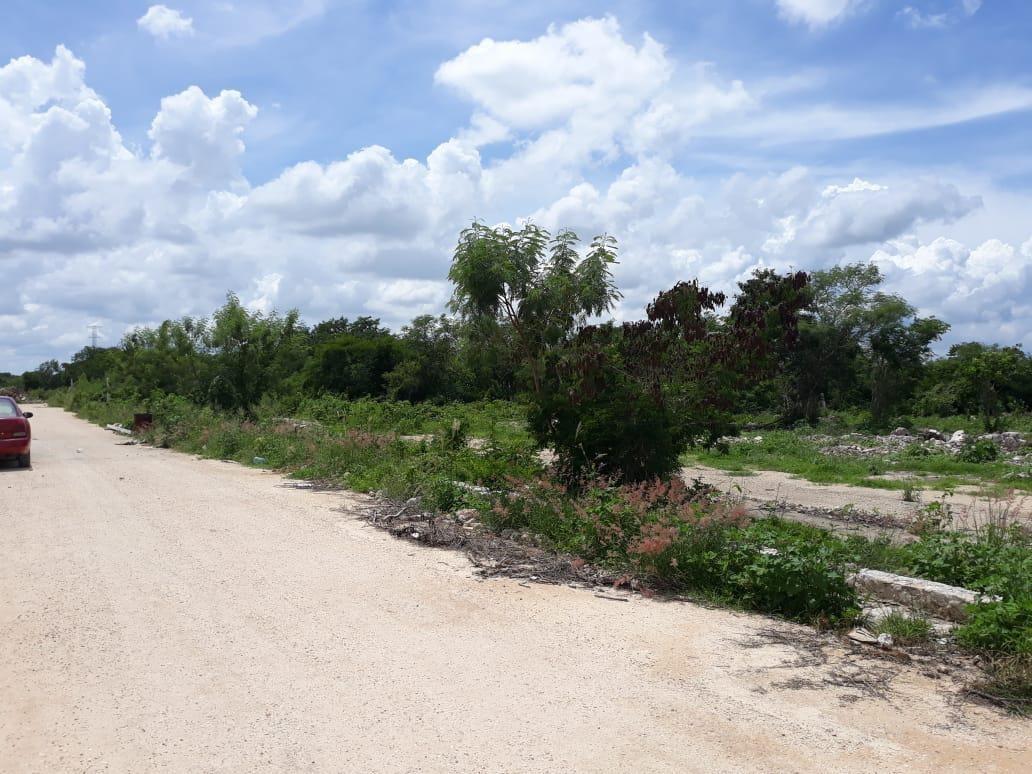 terrenos en venta zona norte en el área de dzitya con facil acceso y calle bca,mérida yucatan.