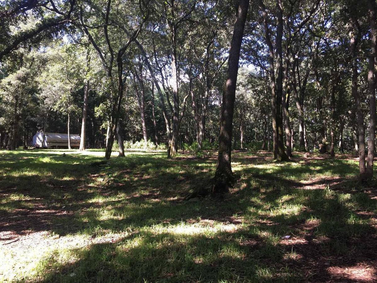 terrenos en villa desde 1500 metros en paraíso arbolado